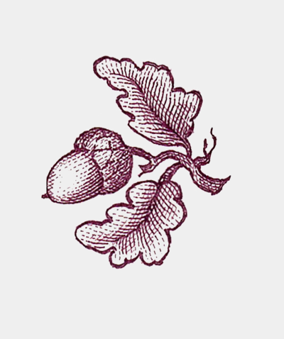 Thornwillow Acorn Motif Note Cards